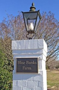 Blue Banks Farm